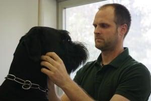 Hundeuntersuchung in der Kleintierpraxis Schlitz